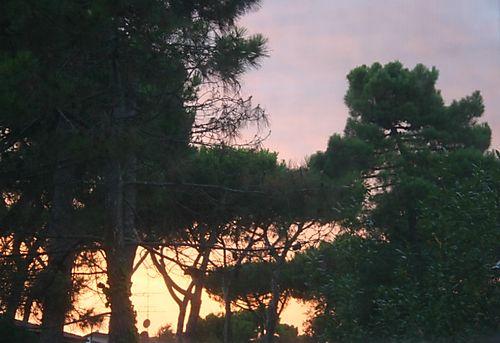 Summer sunset july 08